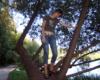 Загнал на дерево